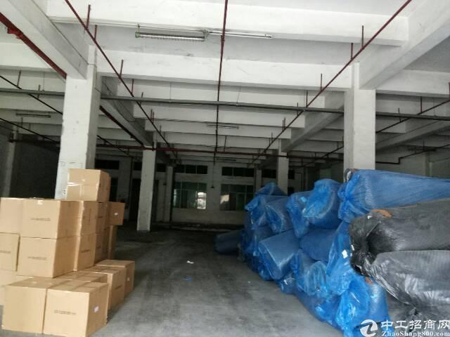 东莞东城新岀650平方厂房