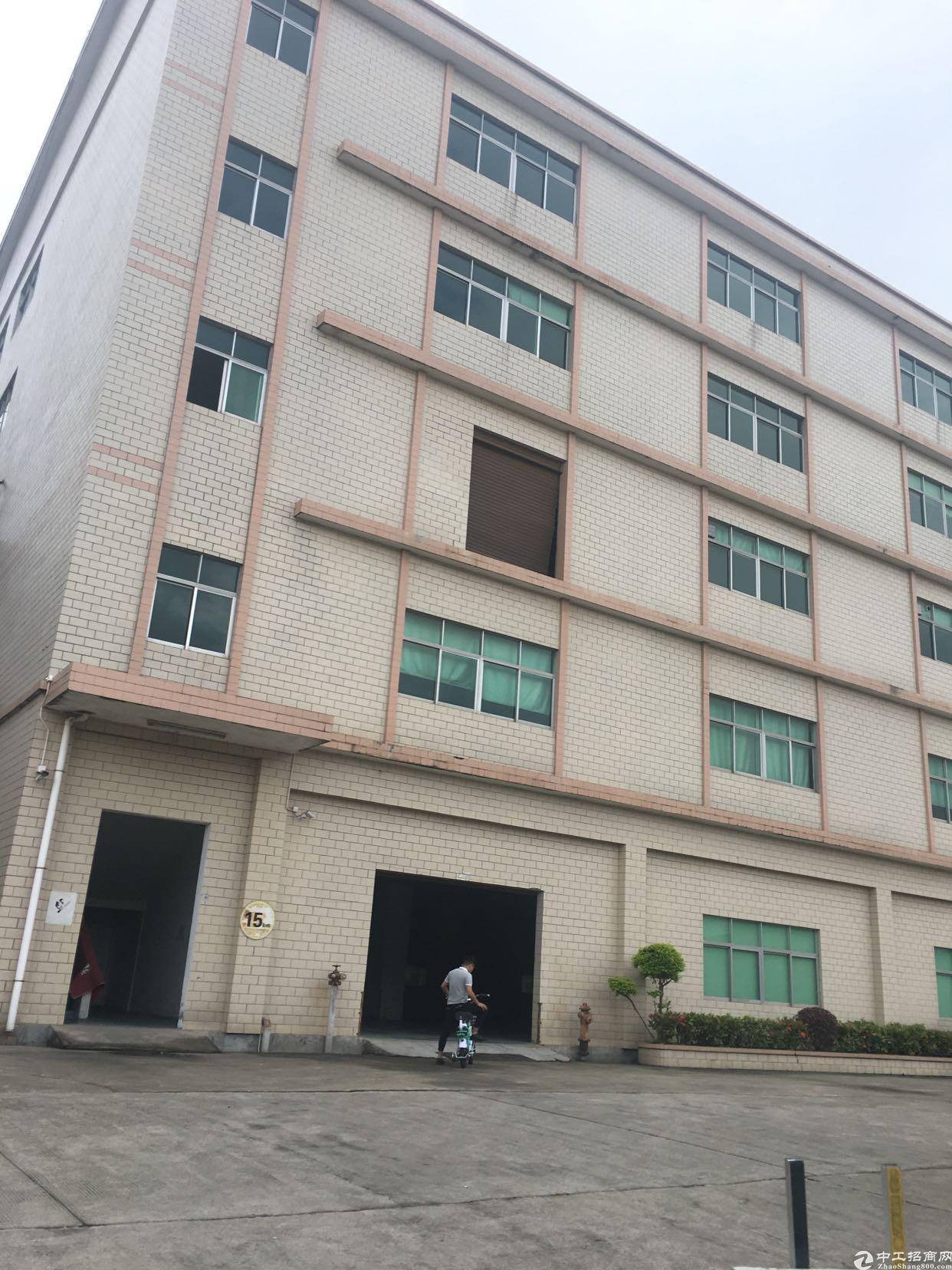 桂花路附近独门独院厂房出租
