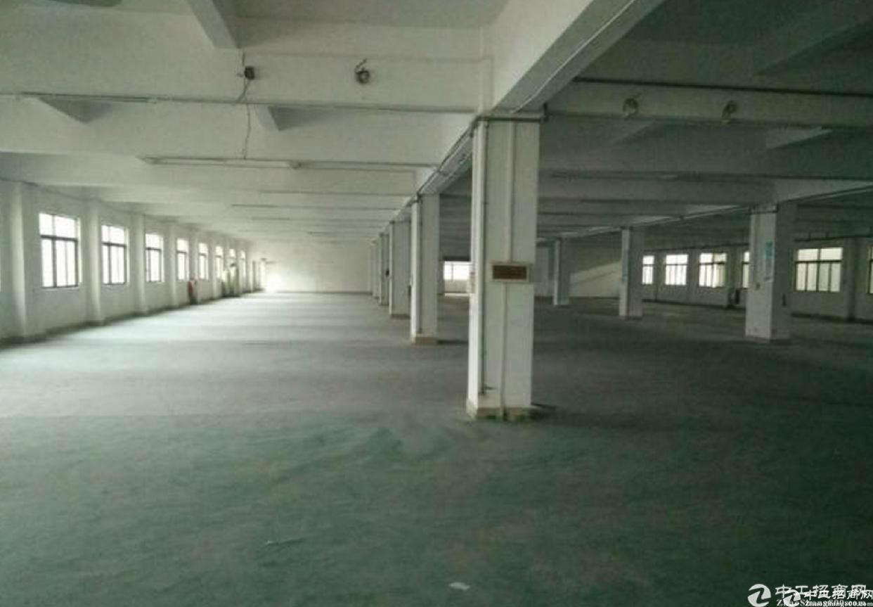 东城一楼750平方二楼1200方标准厂房分租-图3
