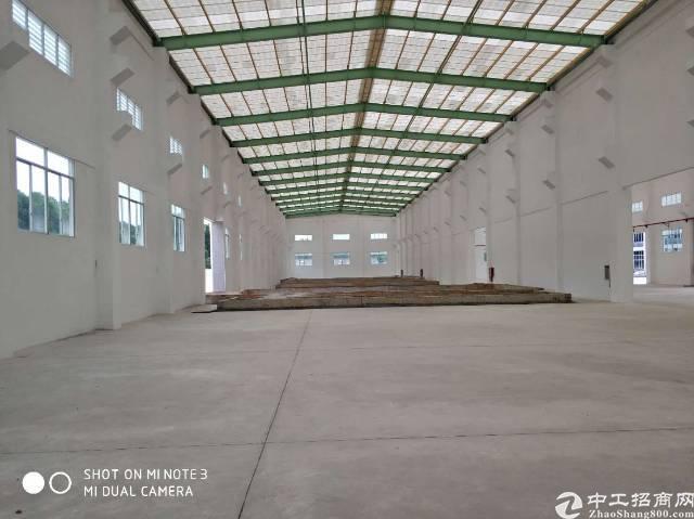东莞清溪全新钢构4800平厂房滴水12米高