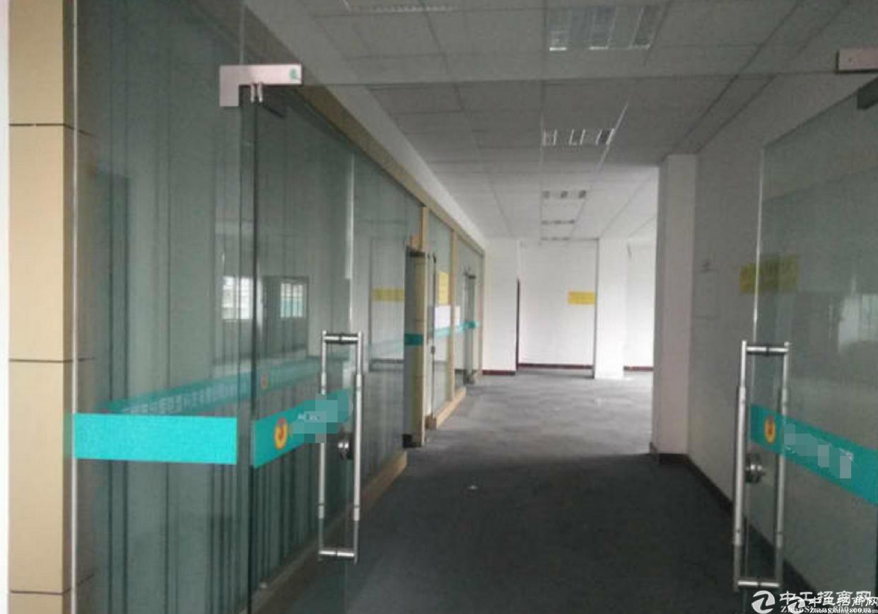 东城一楼750平方二楼1200方标准厂房分租-图5