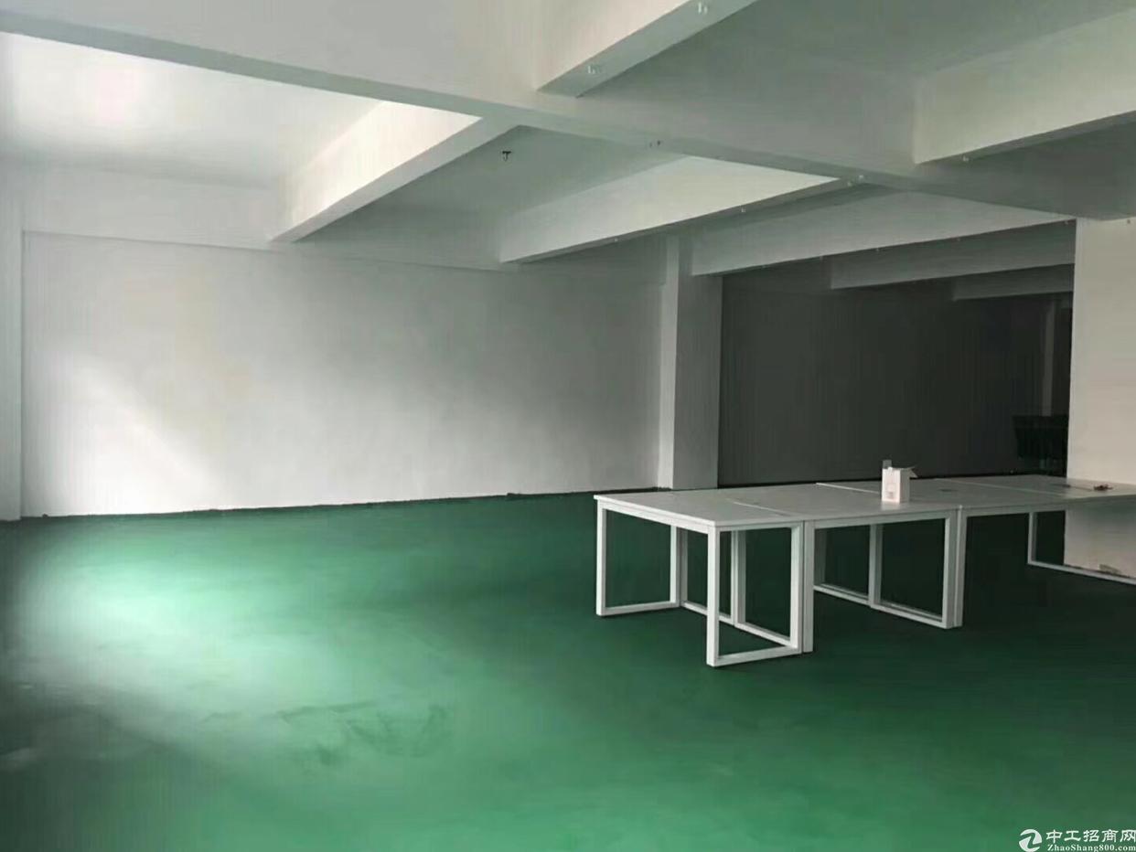 松岗沃尔玛旁边,楼上440平米超靓厂房招租,适合各种加工行业-图3