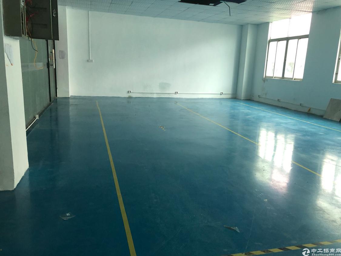龙华大浪商业中心附近刚出350平标准厂房