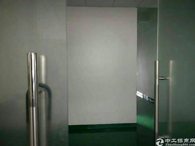 大浪商业中心附近2楼280平带装修标准厂房招租