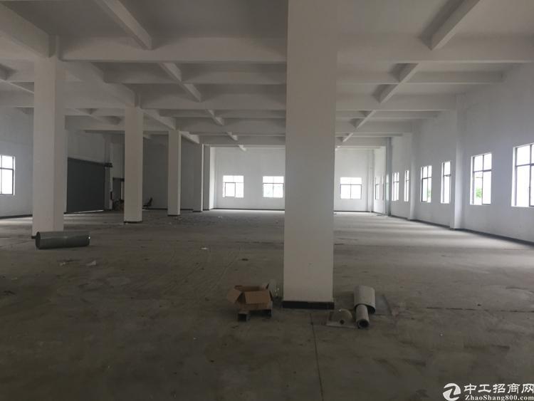 广州市增城区新塘镇新厂房