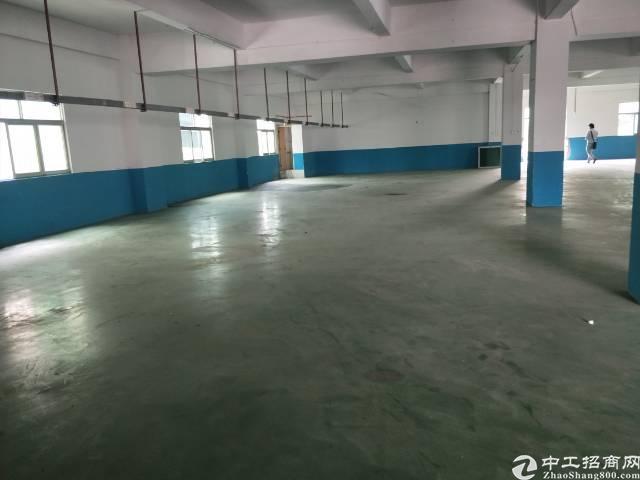 新塘镇标准厂房出租  楼上800平方  有电梯