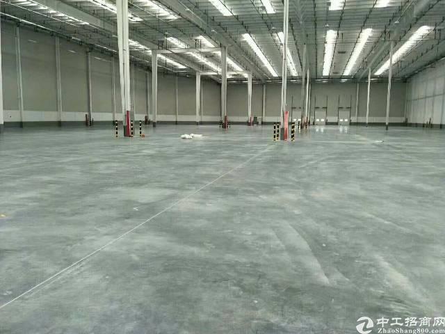 惠阳镇隆大空地独院钢构厂房招租