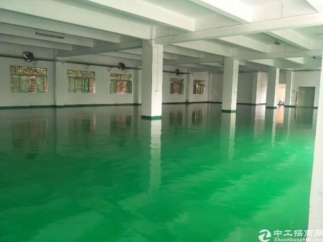 新出标准1楼带地坪漆精装办公室