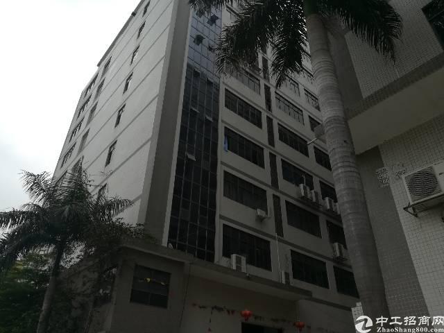 沙井共和楼上2100平方厂房招租