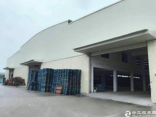 新塘镇全新单一层滴水12米厂房
