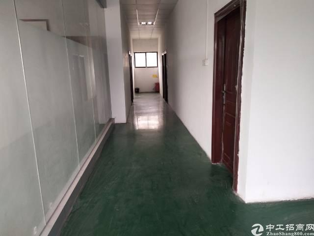 深圳龙岗坪山坑梓新出办公室出租900平-图4