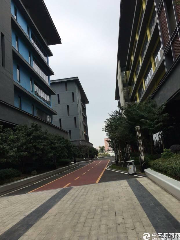 深圳市孵化器龙岗大道边270-500平