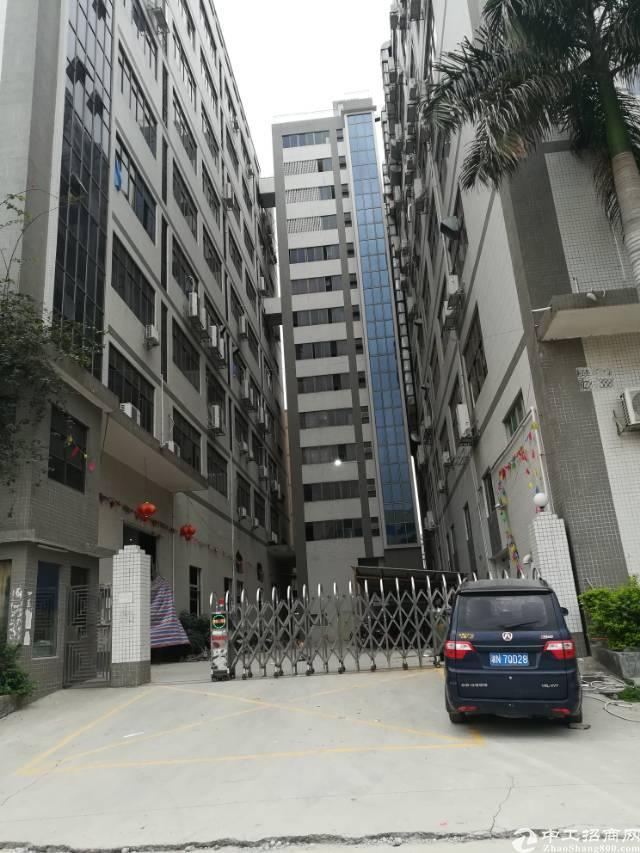 沙井共和楼上500带装修厂房招租