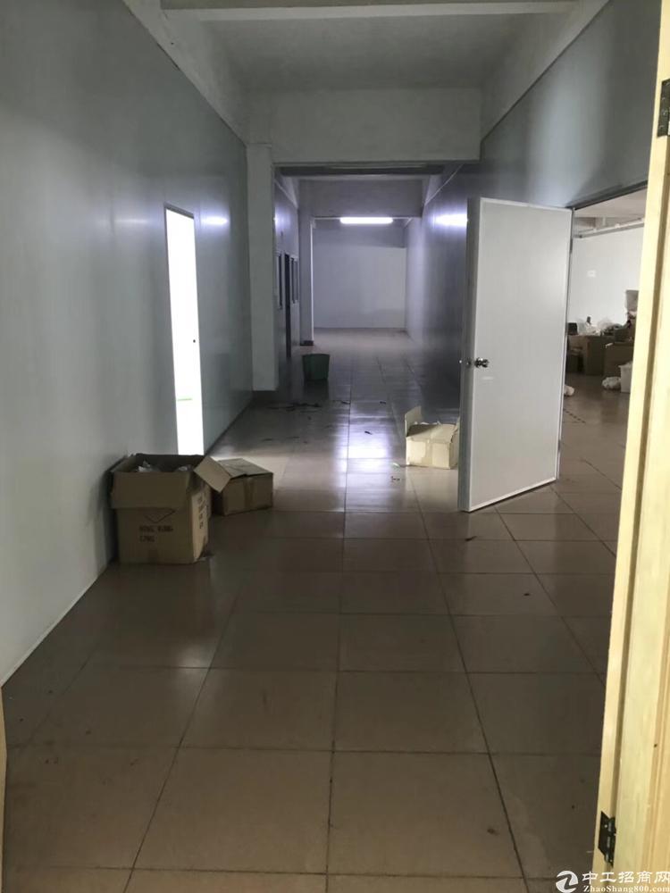 新塘太平洋红本厂房招租-图7