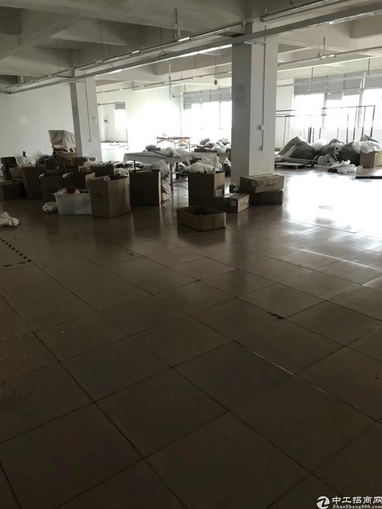 新塘太平洋红本厂房招租-图8