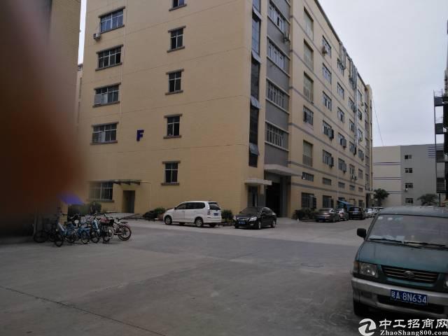 凤岗金凤凰3楼带装修厂房