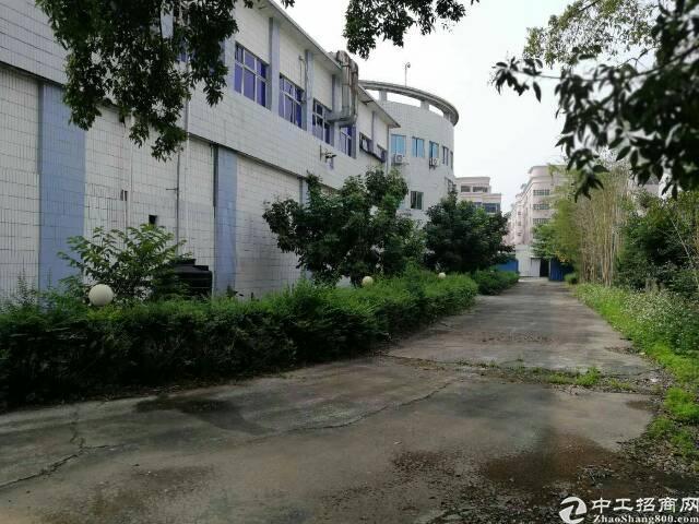 光明新区原房东独院红本厂房招租5500-图2