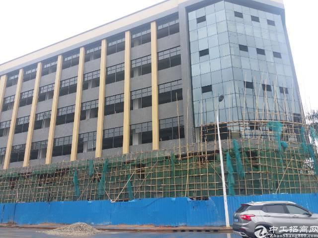 横沥全新工业厂房