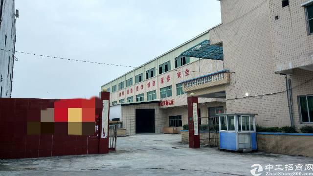 石排镇独院厂房出租,总面积6960㎡,厂房三层5700㎡!