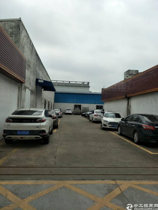 万江大莲塘工业区钢构厂房1000平方出租