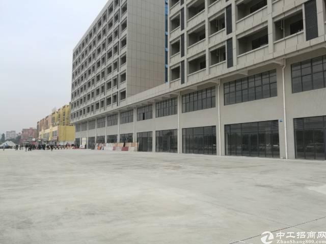 望牛墩高端写字楼出租,共20000平米,可任意分租