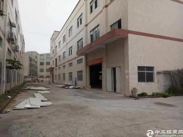 平湖华南城边上新出3800平方独院厂房招租