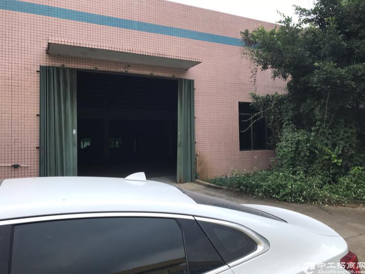 惠州镇隆新出一楼1500平方