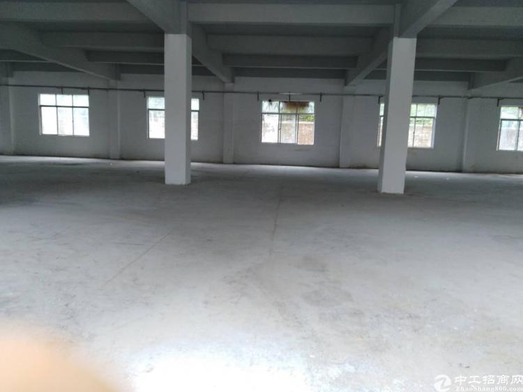 坪山独院厂房出租3800平米 原房东-图4