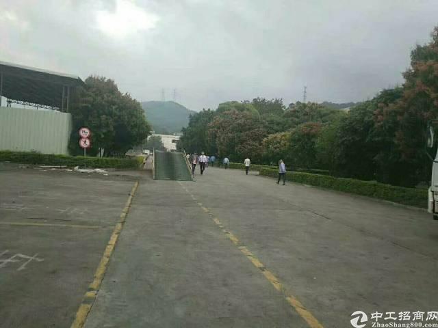 惠阳镇隆原房东滴水15米带牛腿卸货平台空地超大可停飞机