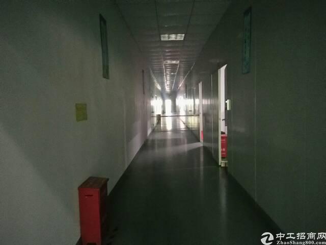 福永和平楼上整层2000平精装修贴片厂转租-图4
