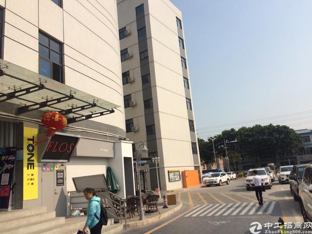 沙井中心路355平精装修办公室
