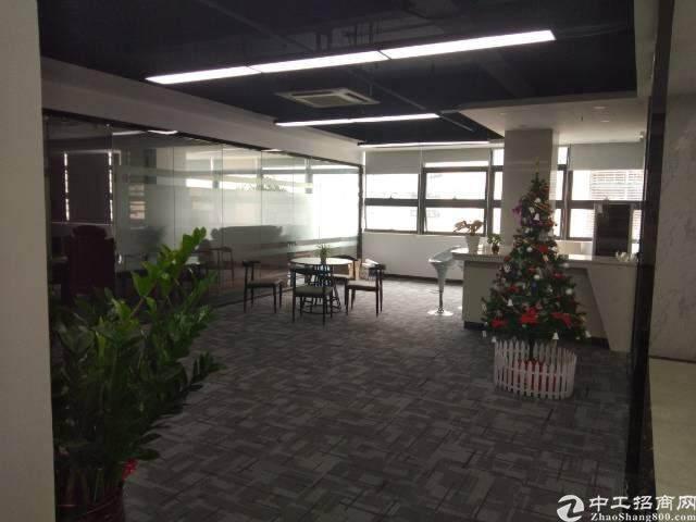 兴东花园式精装修甲级写字楼946平方招租图片4