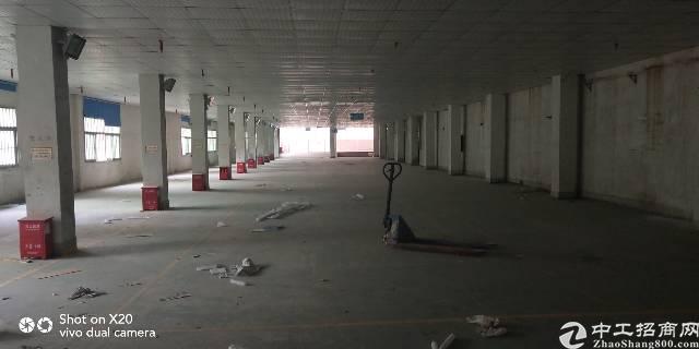 龙华 大浪 一楼厂房 仓库 100-1000平大小可分