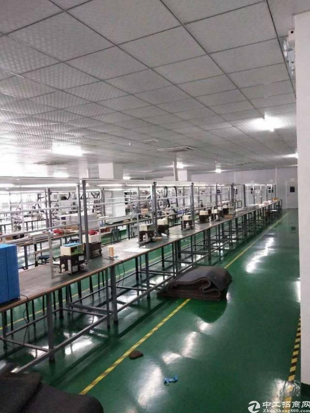 松岗沙浦围三楼带精装修厂房450平16块招租-图2