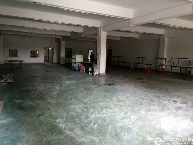 东莞东城新岀600平方厂房