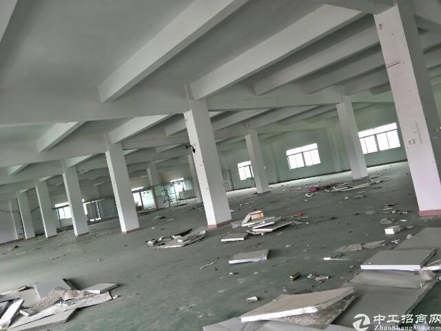 新塘独门独院原房东位置好形象好厂房。