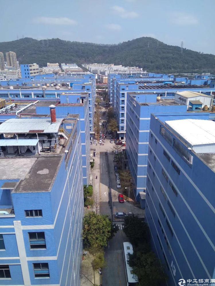 西乡固戍大门3300平方带装修厂房
