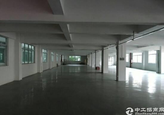 惠阳新圩原房东厂房二楼1600平方招租-图2