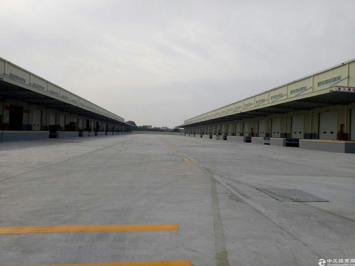 广州物流园65000平米,宿舍4000平方米。可分租