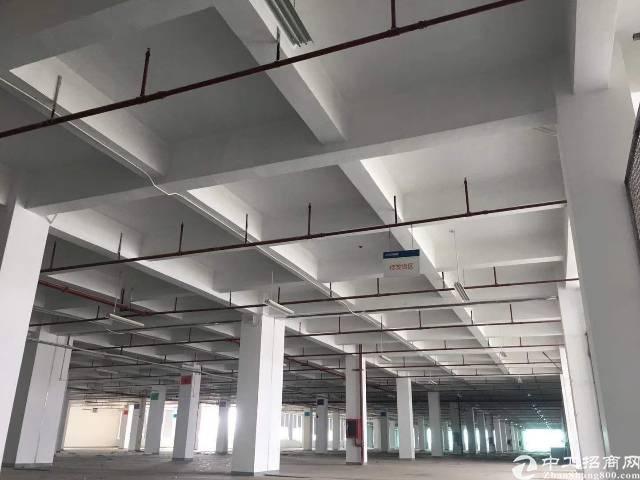 坪山大工业区新出一楼2358平,有红本。可分租