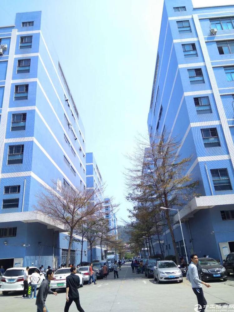 西乡固戍大型工业园区4楼3300平方