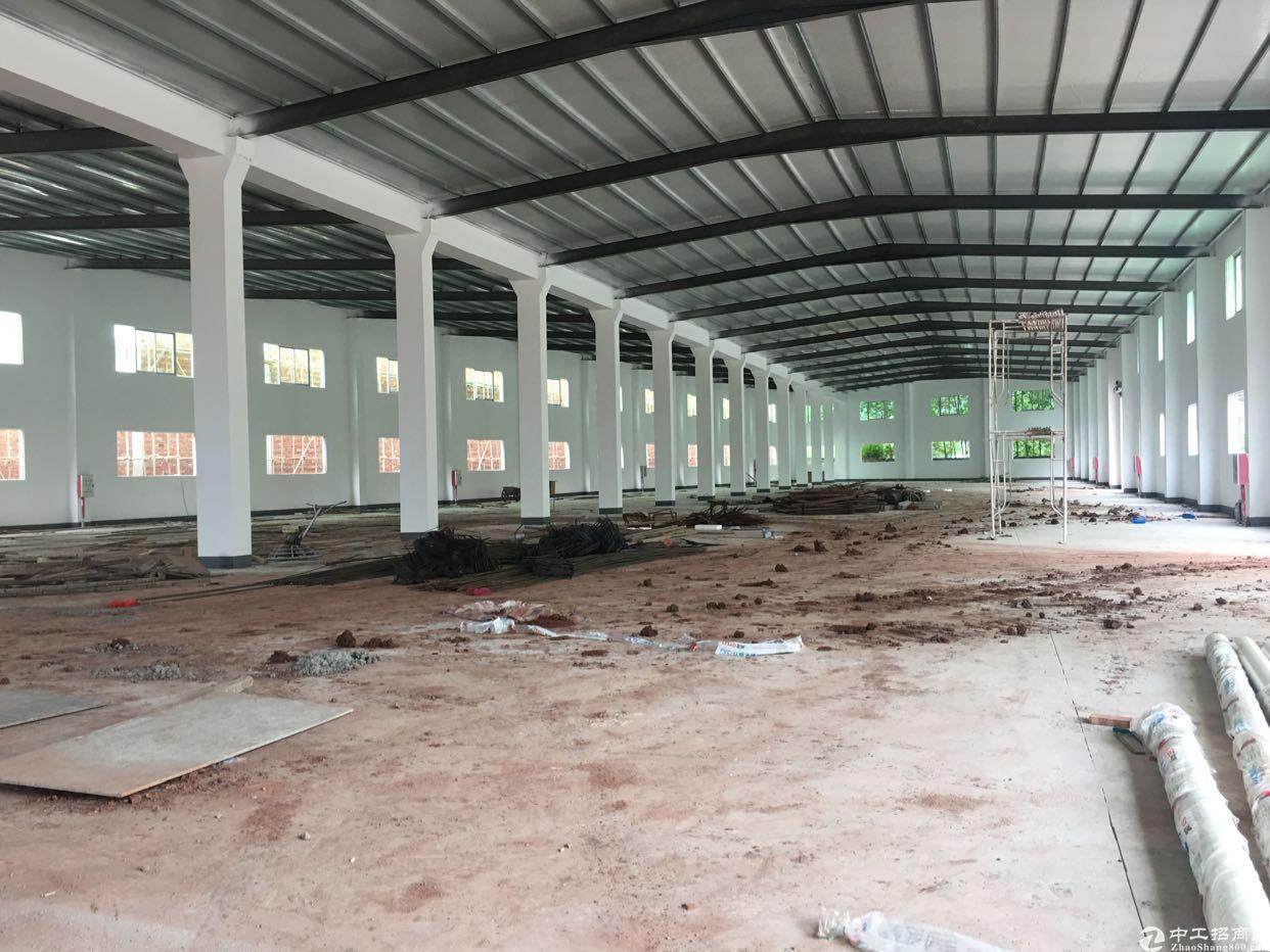 陈江 在建大型园区厂房招租面积50000平米可做多行业