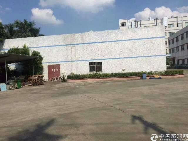 塘厦镇清湖头6米高单一层2000平方招租-图4