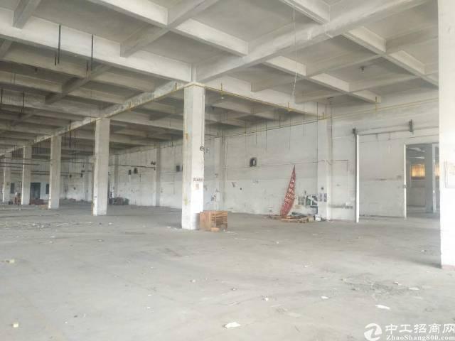 南城独家暗盘独院单一层厂房一万三千平方,高七米,宿舍一千,