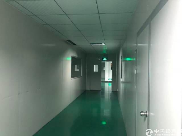 福永靠沿江高速路口新出楼上1250平精装修带无尘车间厂房