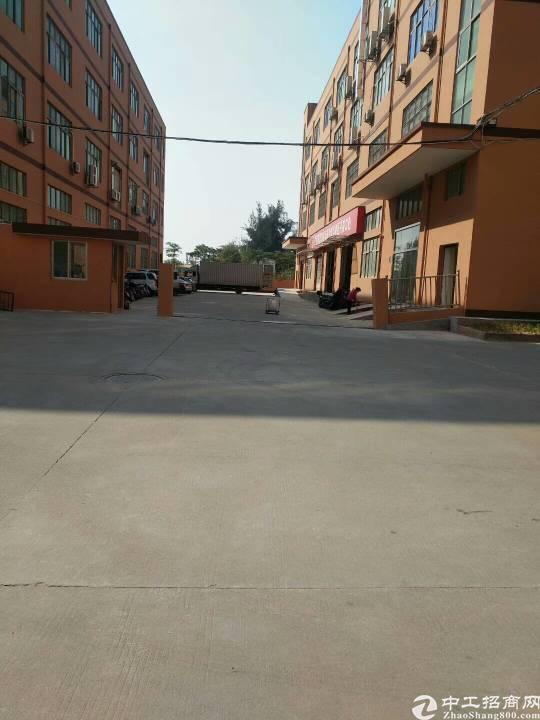 东莞长安10000平厂房出售可分层