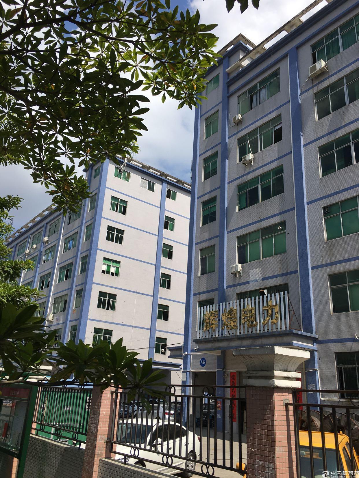 坂田杨美地铁附近新出楼上1050平方低价出租