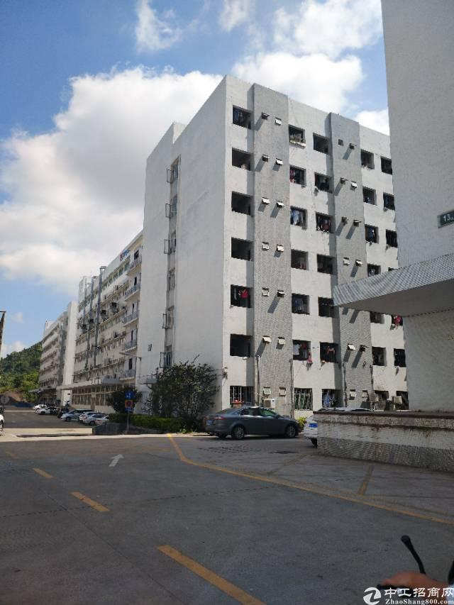 西丽阳光南岗工业区楼上700平米带装修无公楼厂房出租