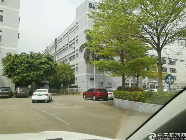 福永原房东独院6600平租金30