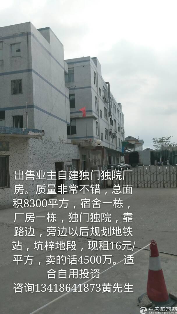 出售惠东平山谭公红本独门独院厂房。适合自用投资-图6